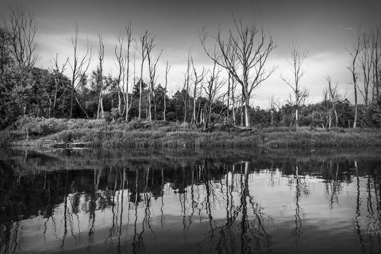 Ostatnia dzika rzeka